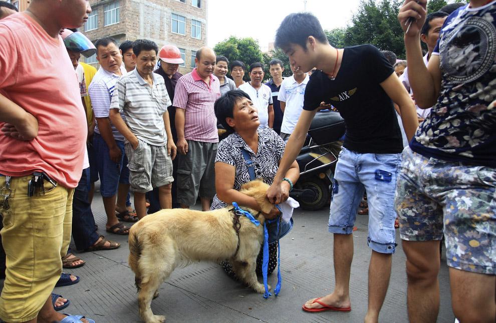 В Китае, в Юлине проходит ежегодный фестиваль собачьего мяса