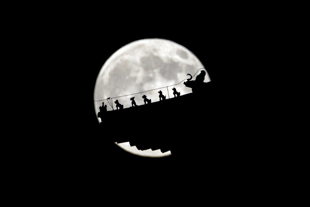 Суперлуние и фигурки на китайском павильоне в Пекине