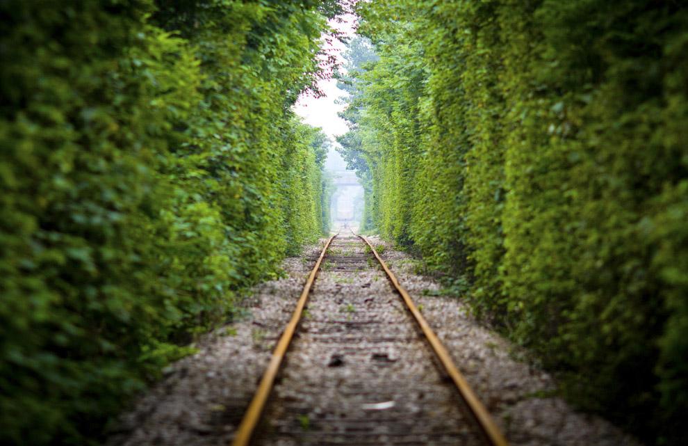 Романтический железнодорожный путь в провинции Цзянсу
