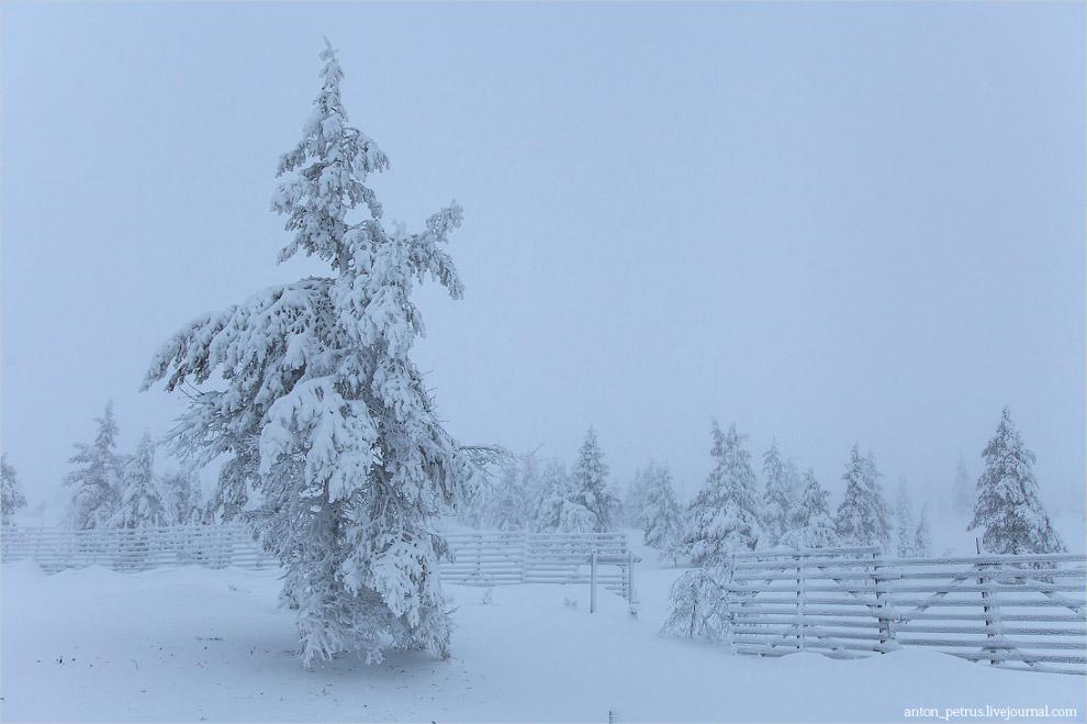 Финляндия, парк Яллас-Палластунтури
