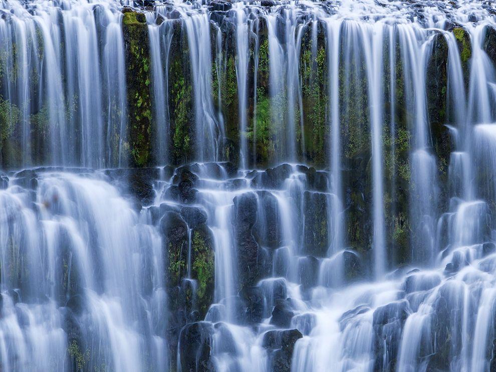 Шаста-Тринити — национальный лес на севере штата Калифорния, США