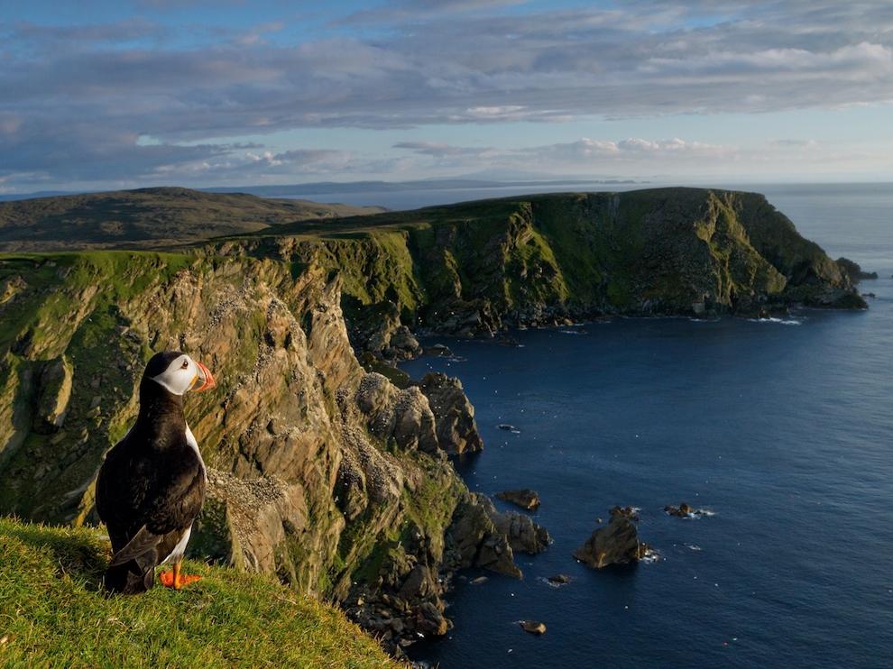 Атлантический тупик, Шотландия