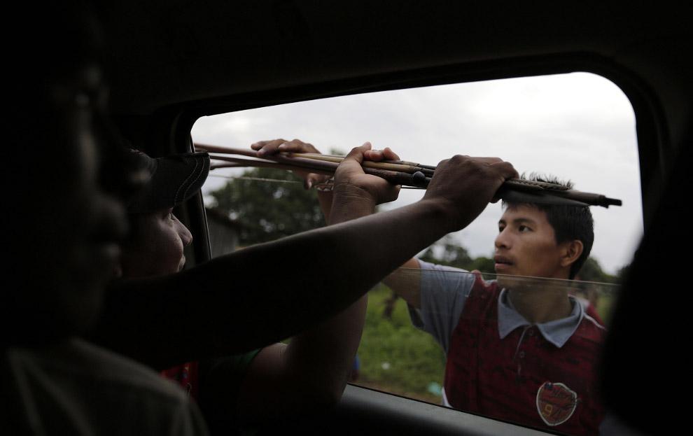 Одно из оружий борьбы с черными лесорубами — лук и стрелы