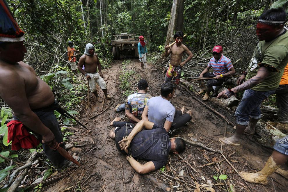 Вот они, возмутители порядка, уничтожающие леса