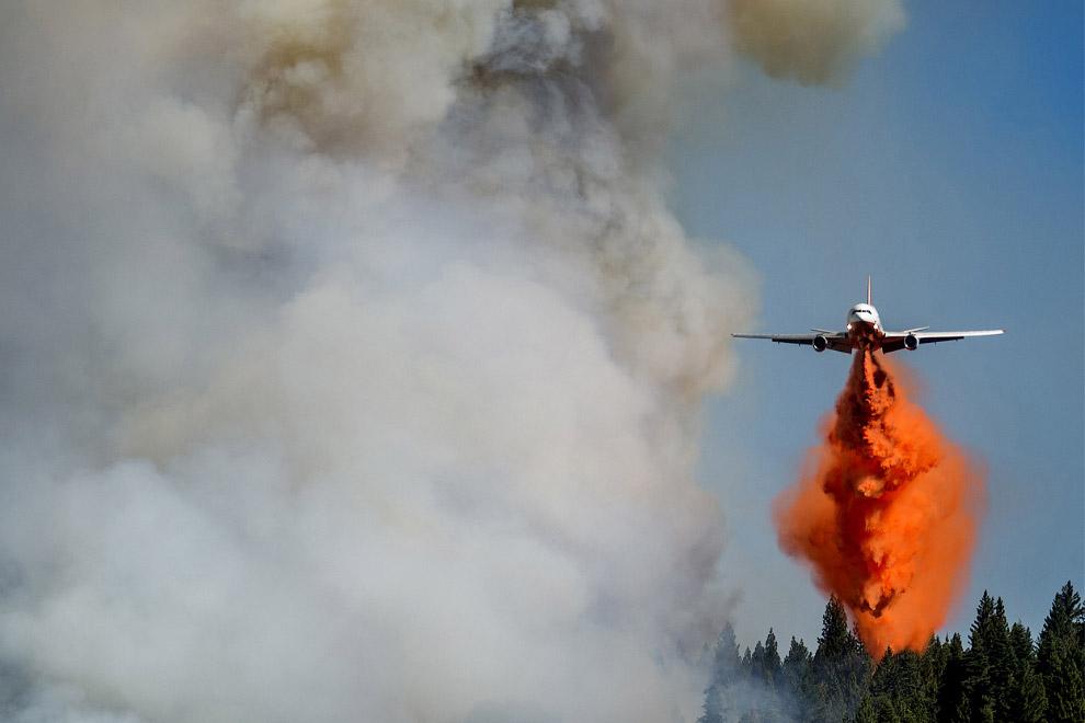 Пожарный самолет борется с Королевским огнем в Калифорнии