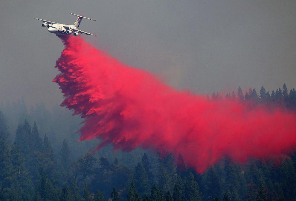 Еще один летучий борец с лесными пожарами