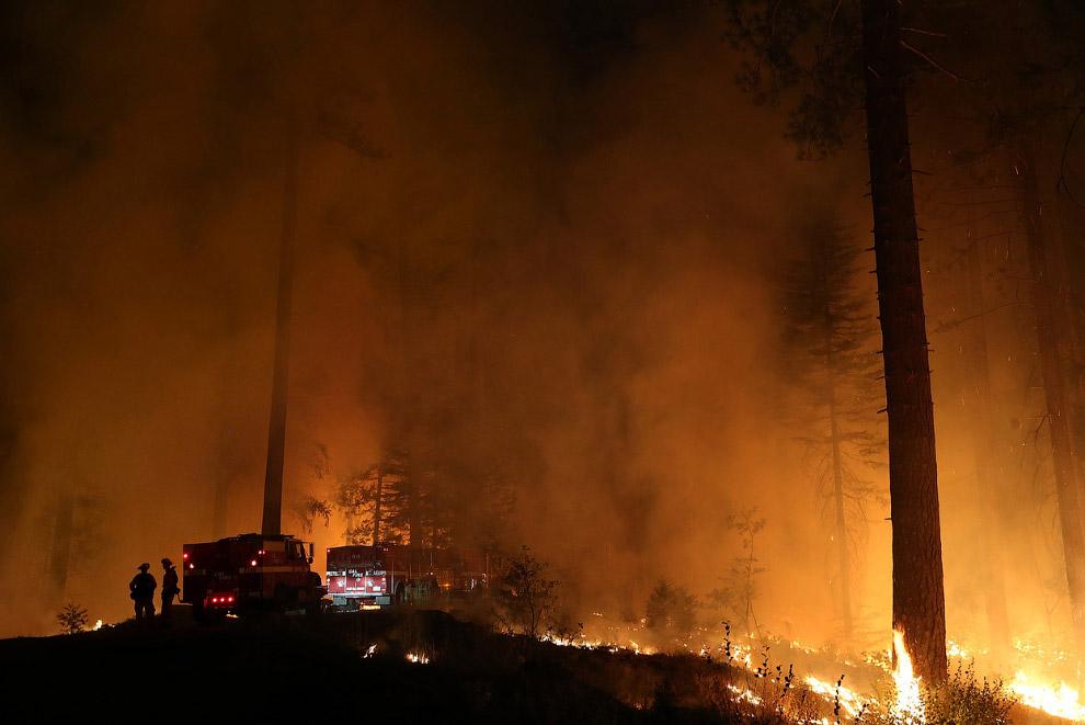 Пожары обычно бывают нижние и верхние