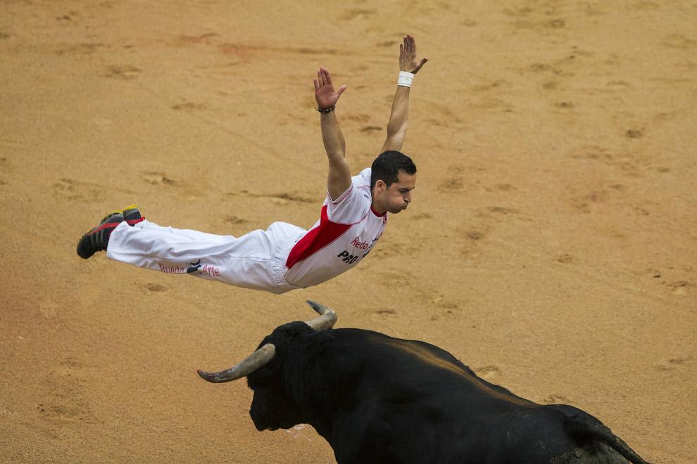 Полет над быком