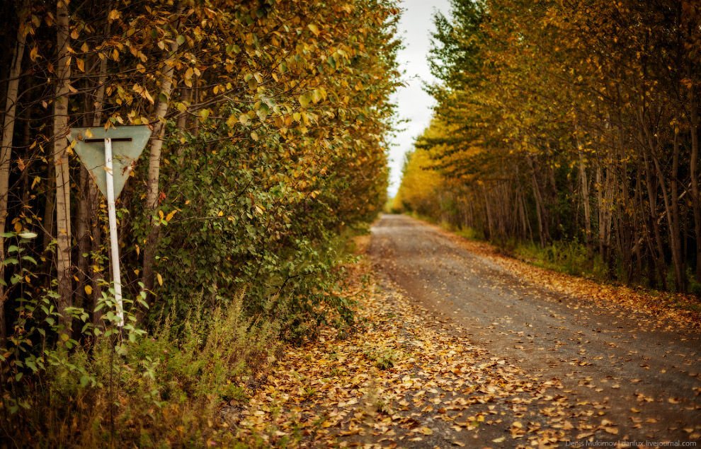 Дорога в деревню Долиновка