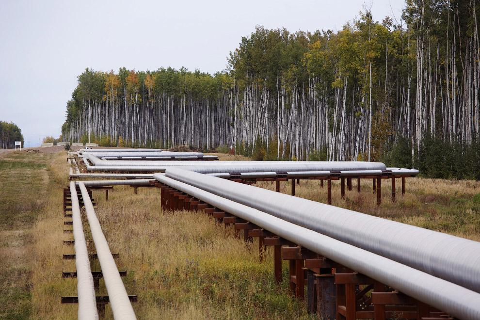 Трубопроводы на месте добычи нефти из нефтеносных песков в Альберте