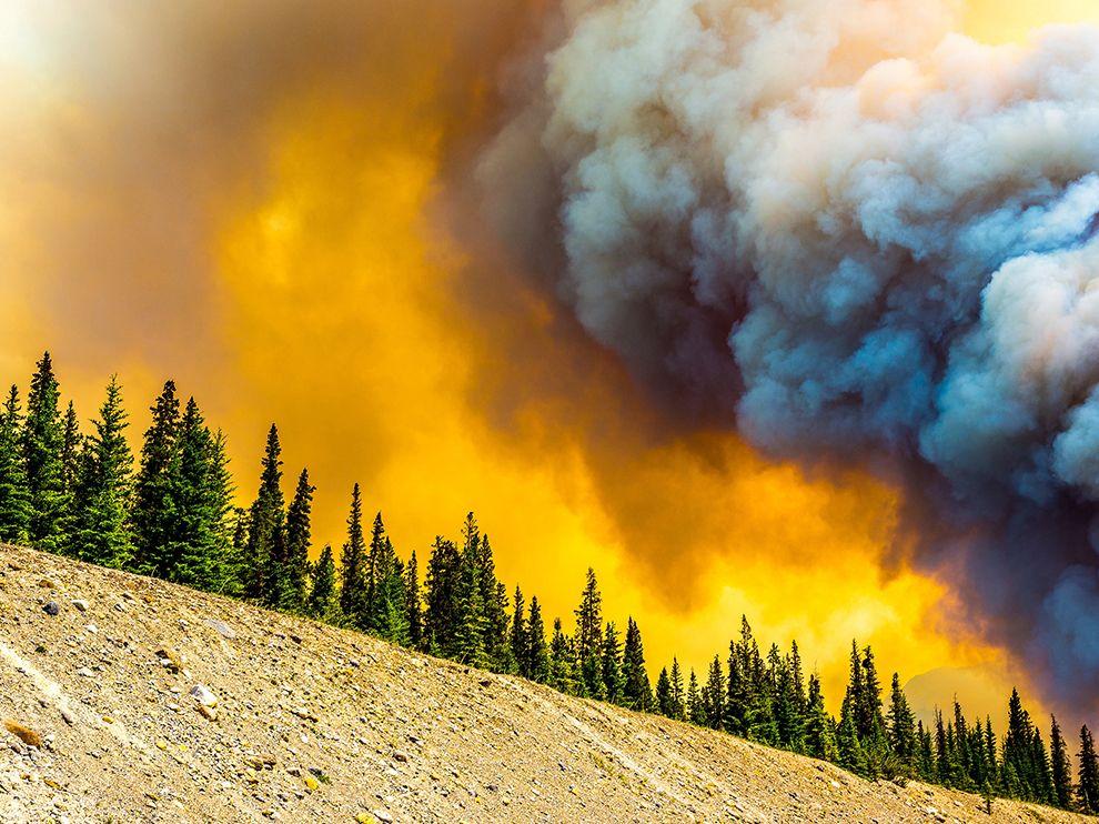 Пожар в провинции Саскачеван, Канада