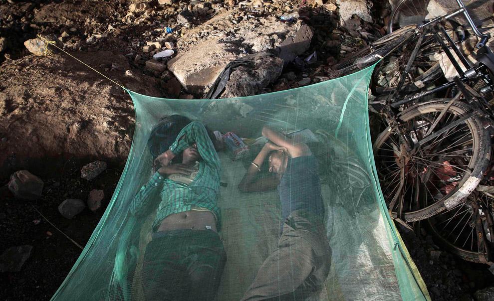Мигранты под москитной сеткой под эстакадой в Мумбаи, Индия