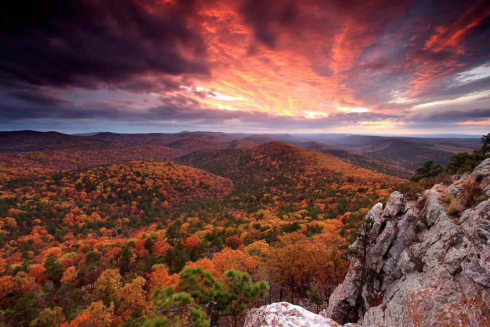 Национальный лесной заповедник в Арканзасе