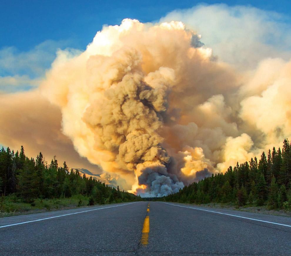Пожар в в национальном парке Банф, Канада