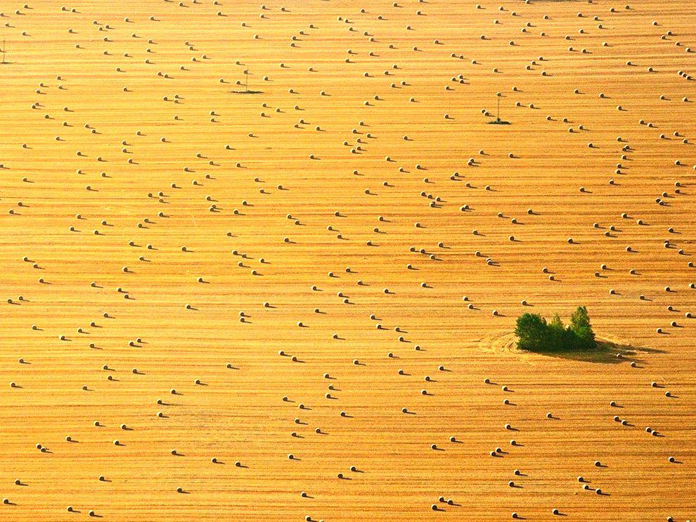 Сенокос на севере Польши