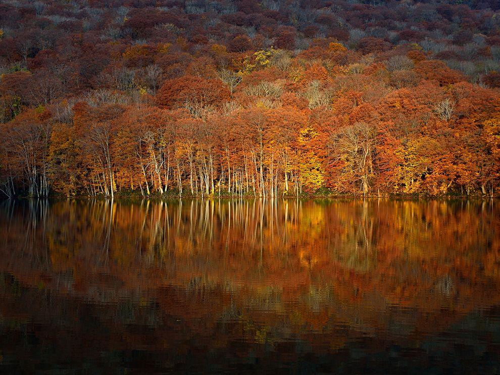 Осень в префектуре Аомори, Япония