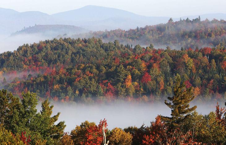 Туман в горах в Нью-Гемпшире, США