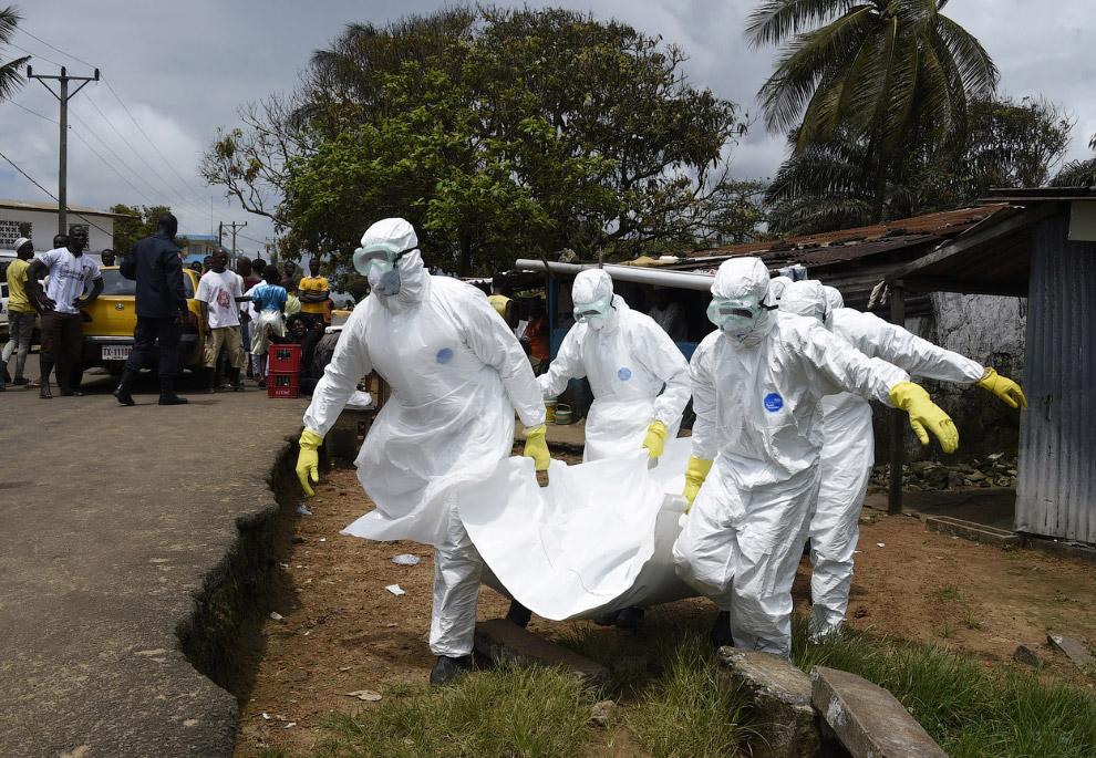 Еще одна жертва вирус Эбола