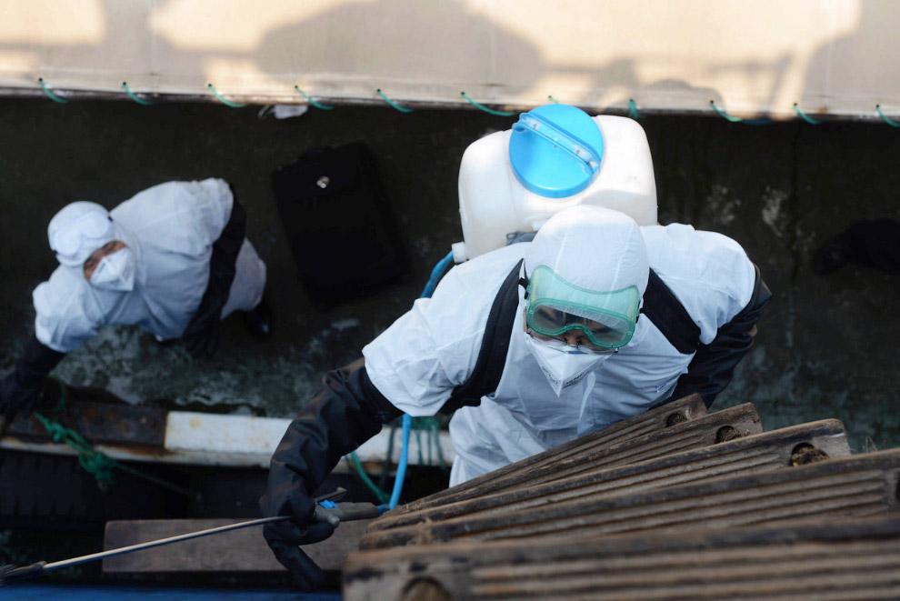 Китайские офицеры, занимающиеся карантином, досматривают судно из Сьерра-Леоне