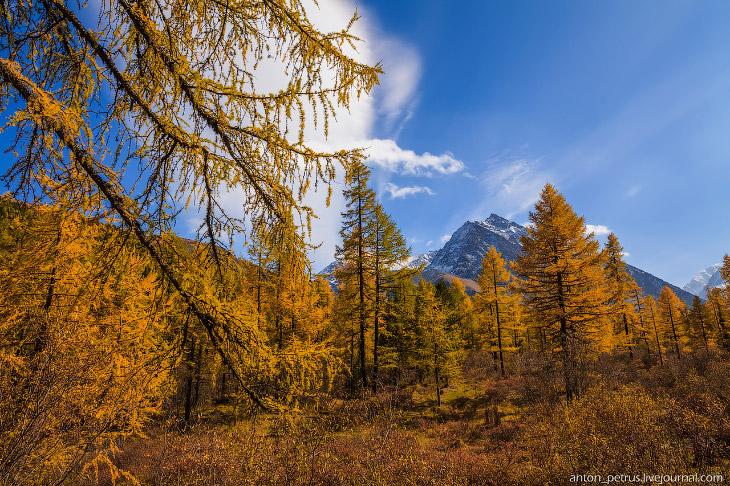 Там, где живет настоящая осень