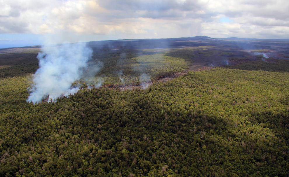 Это вид с воздуха на поток лавы из вулкана Килауэа и как она идет сквозь лесной массив