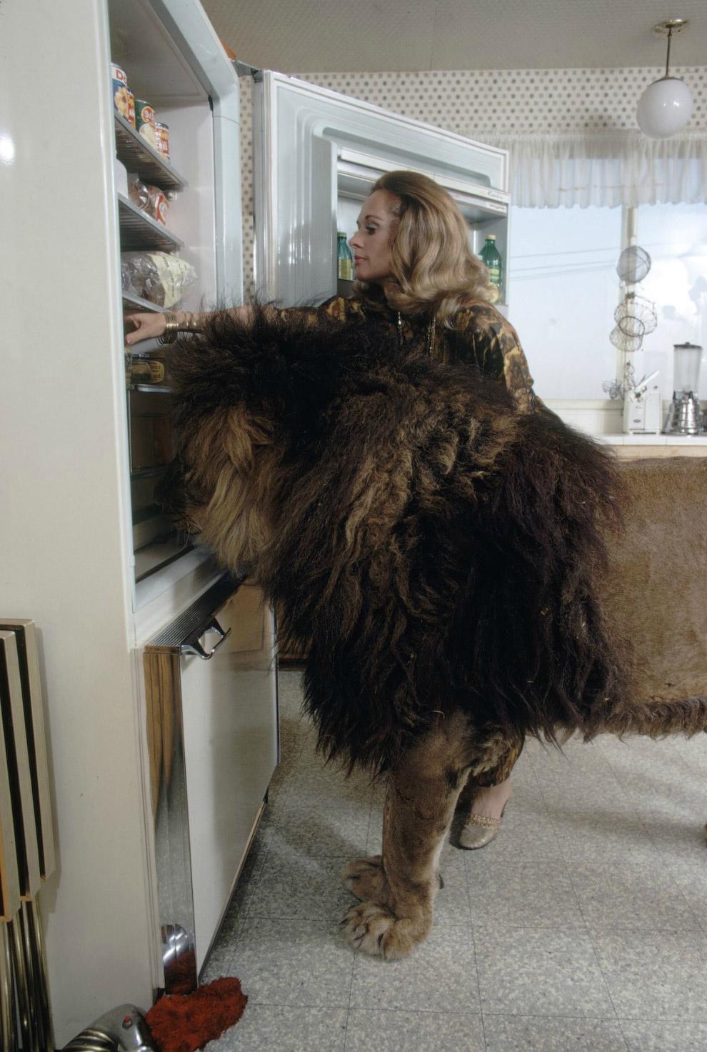 Типпи Хедрен с Нилом у холодильника