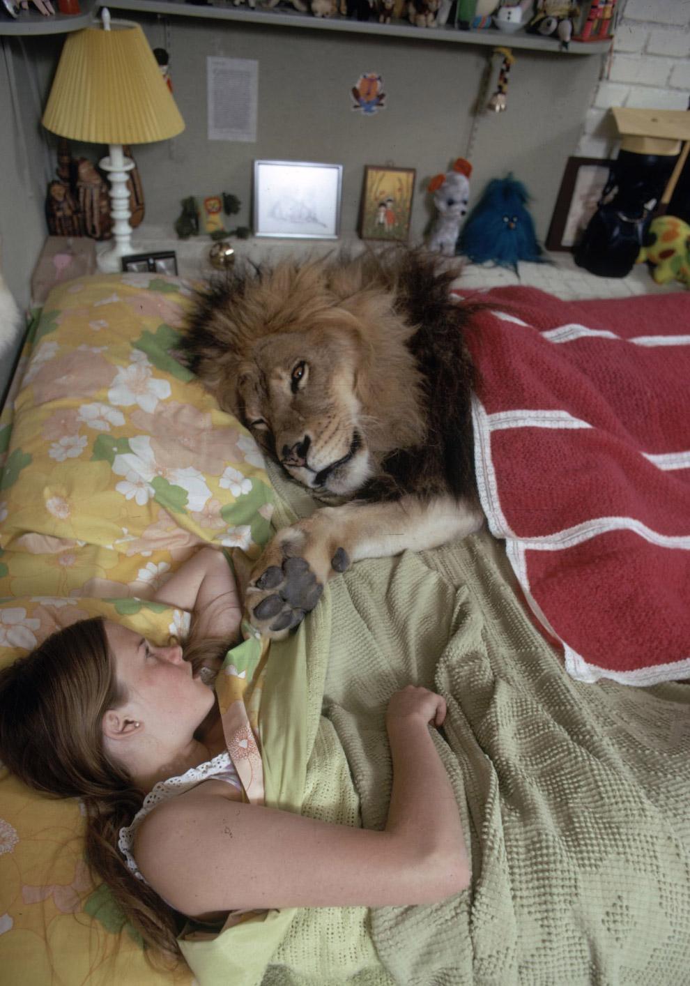 Жизнь со львом