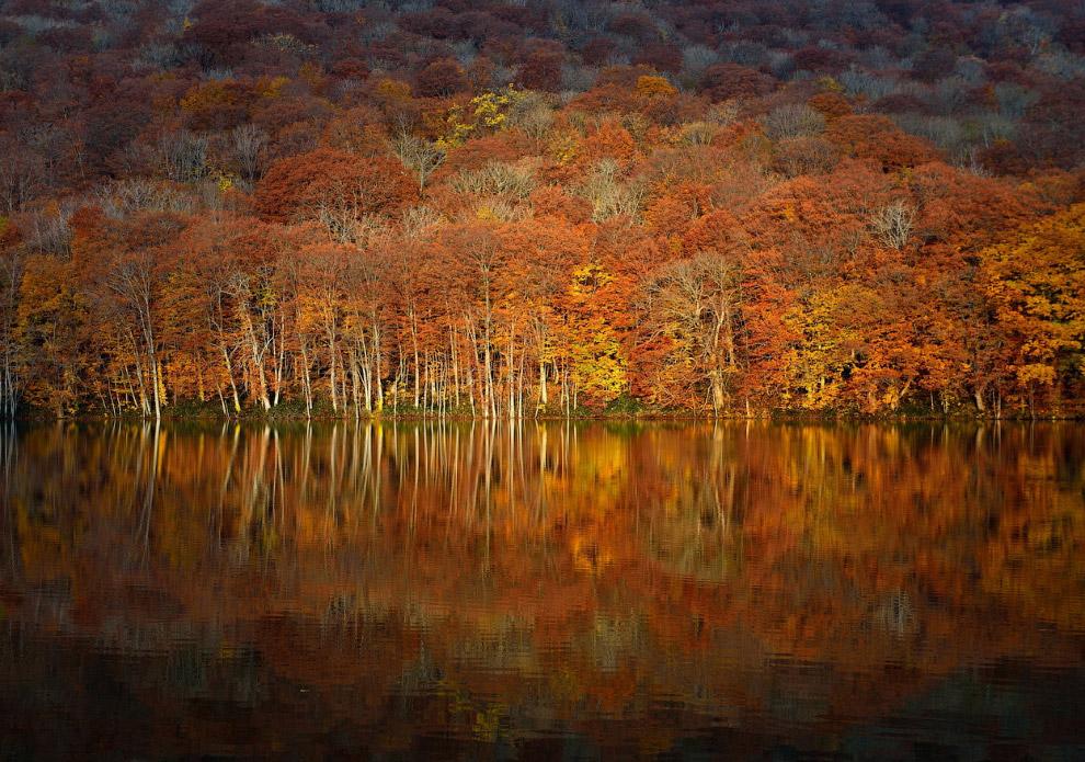 Осенний пейзаж в префектуре Ао́мори, Япония