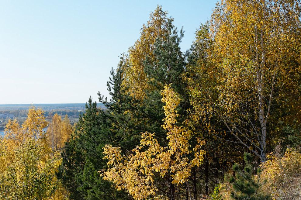 Осень на берегу реки Томь