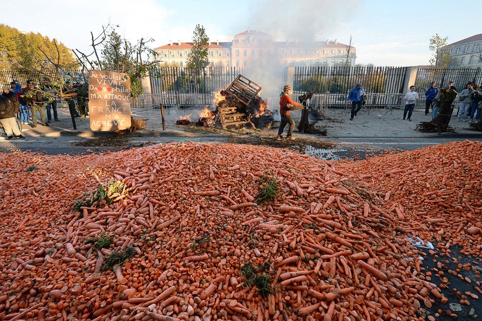 Морковка на дороге