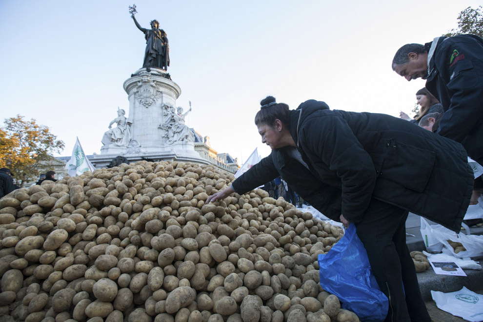 Фермеры завалили площадь Республики в центре Парижа картошкой