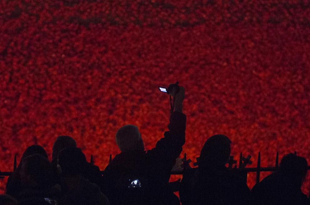 Инсталляция привлекла около пяти миллионов посетителей