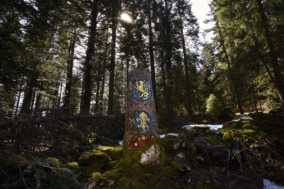Граница в лесу между Францией (спереди) в Швейцарией (сзади) в Валле-де-Жу