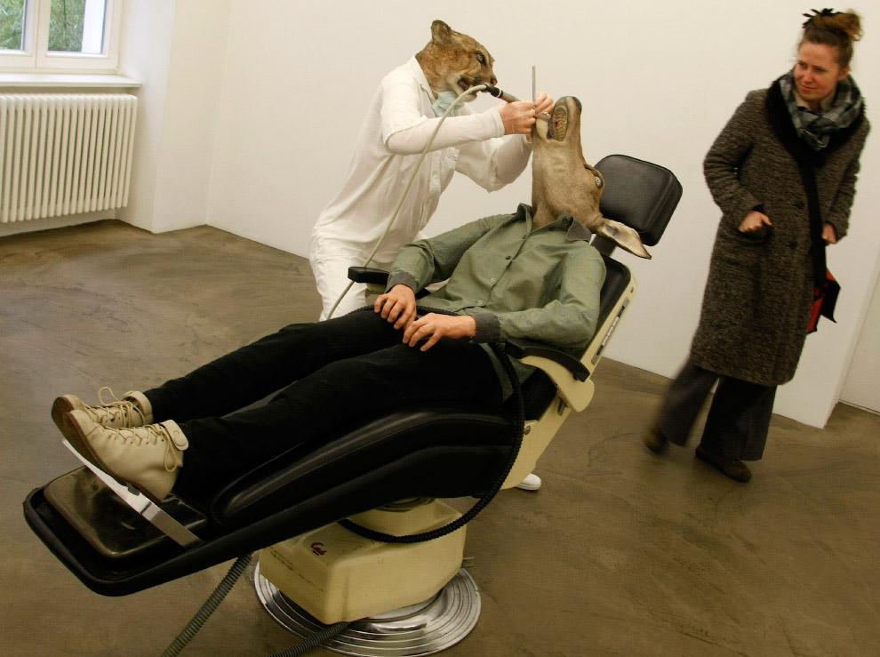 Пума-стоматолог