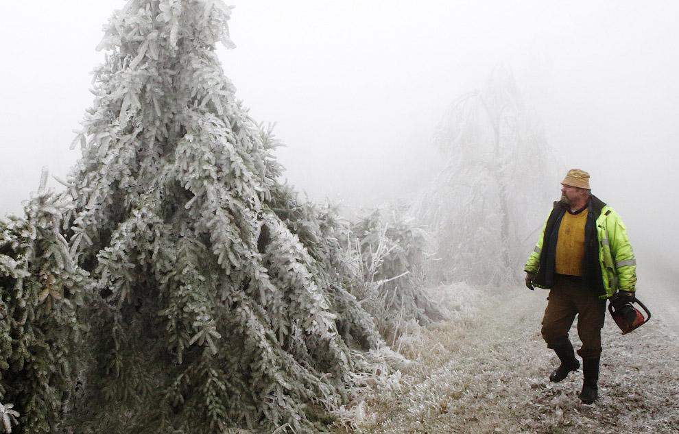 Лесничий осматривает свои ледяные владения в северной Австрии