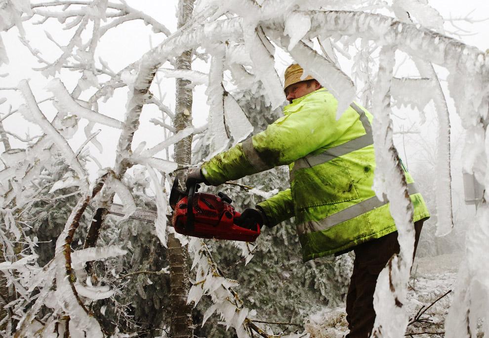 Чтобы ледяные деревья не упали на кого-нибудь, их приходится спиливать