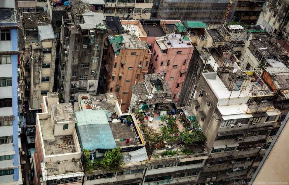 Жители многоэтажек используют крыши в качестве сушилок для белья и места для отдыха