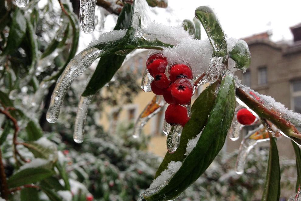 Ледяной дождь в Праге