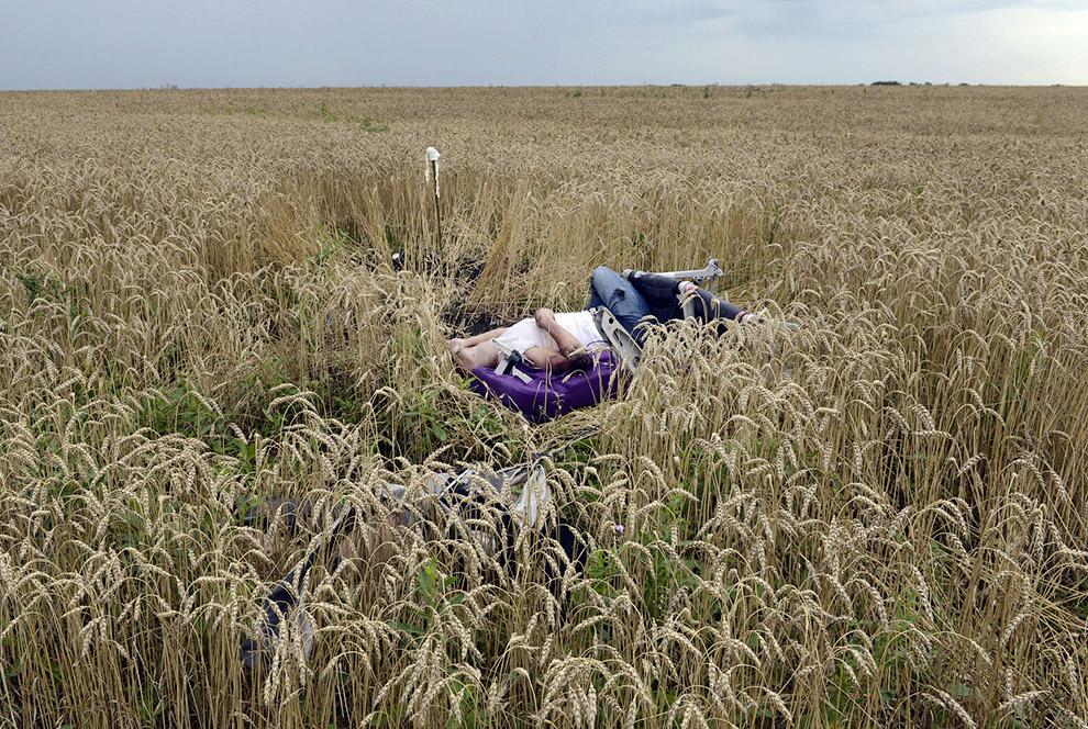 Бывший пассажир в пшеничном поле, все еще привязанный ремнями безопасности к самолетному креслу, Украина