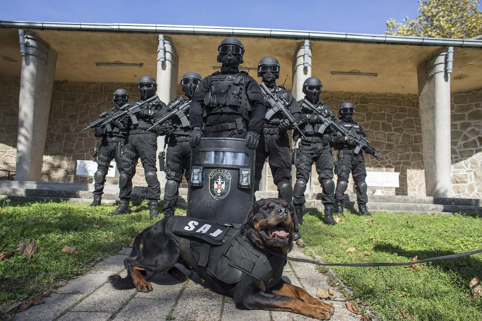 Анти-террористический отряд из Сербии