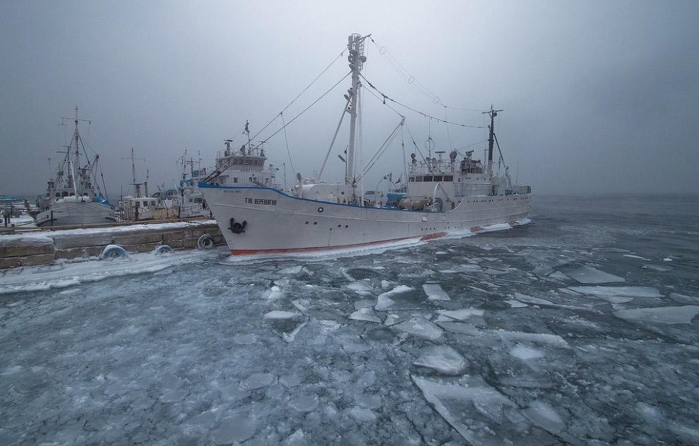 """Научно-исследовательский корабль """"Г.Ю.Верещагин"""" на зимовке"""