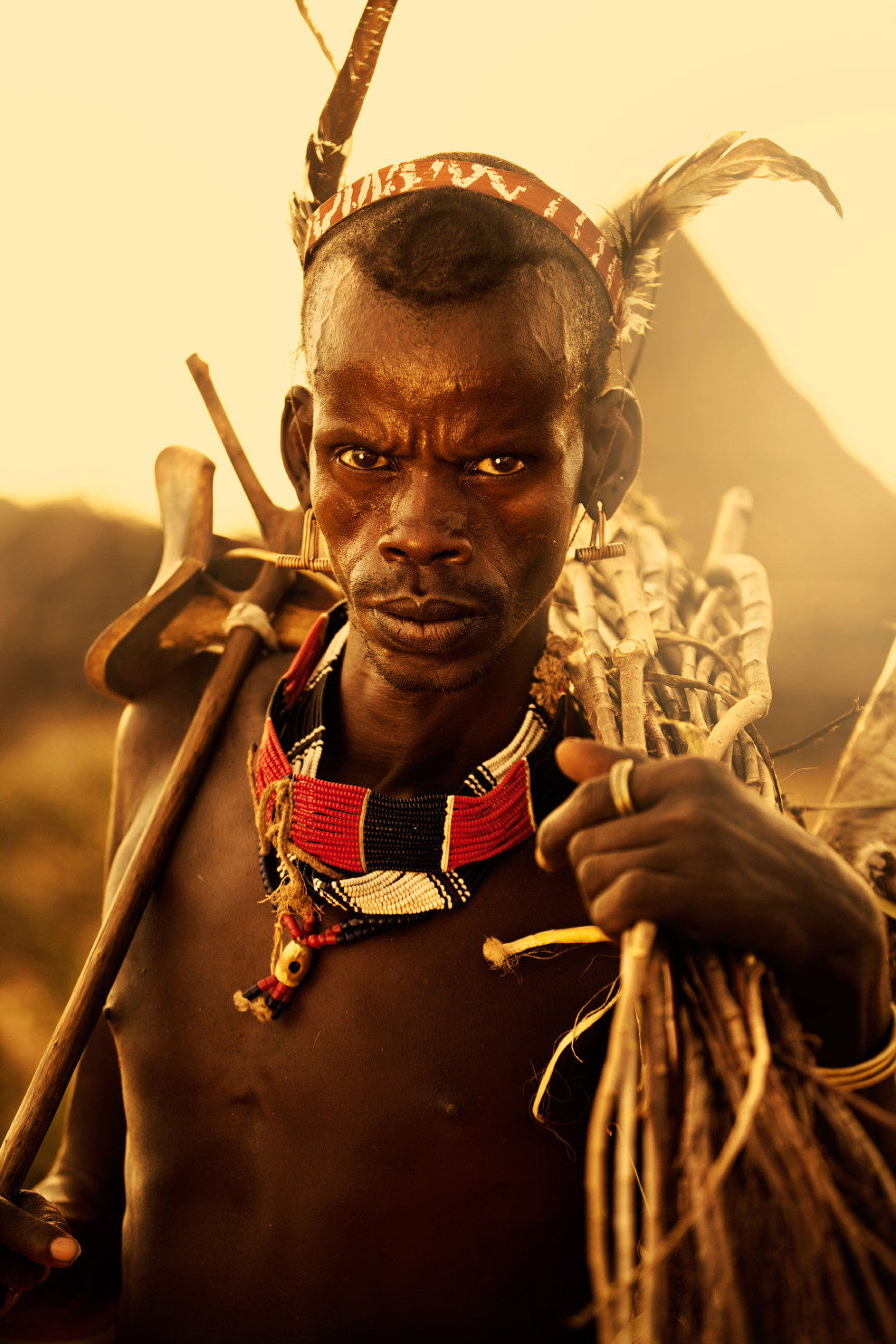 Человек собирает палки для укрепления загона для домашнего скота, Эфиопия