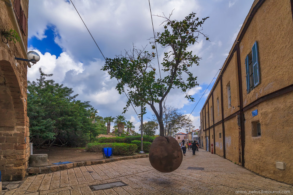 Это знаменитое парящее апельсиновое дерево, посаженое в глиняной «горошине» — скульптура работы Рене Морина