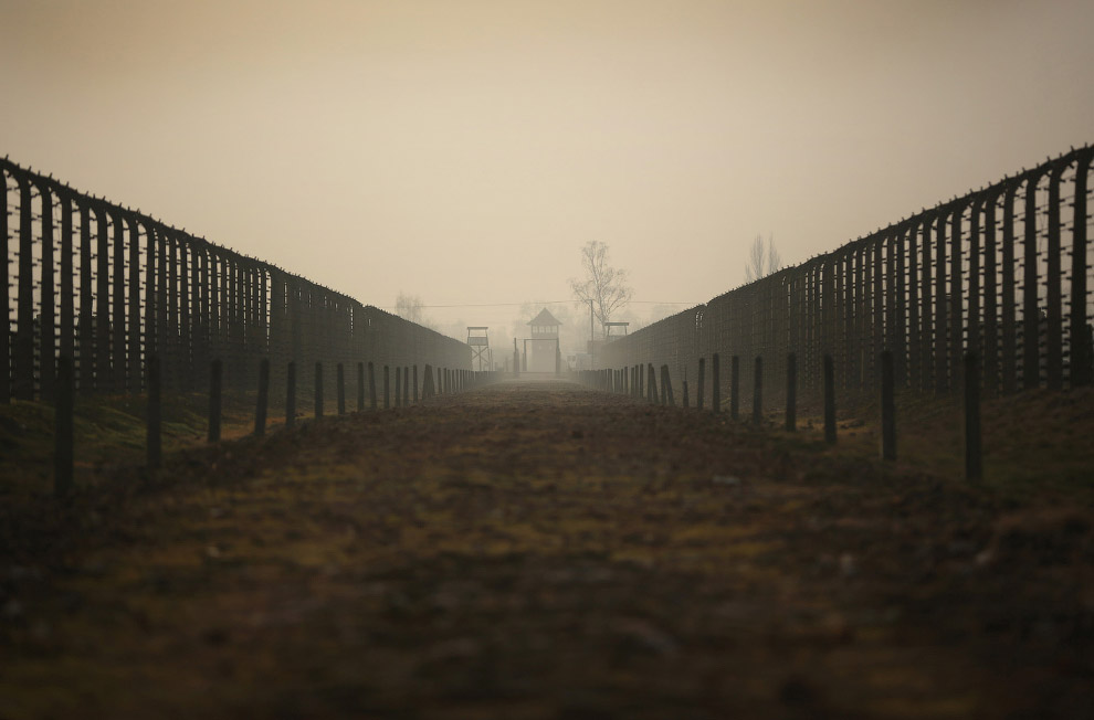 Путь к газовым камерам. Лагерь Освенцим