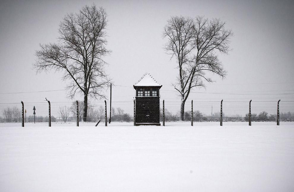 Сторожевая башня и забор из колючей проволокиСторожевая башня и забор из колючей проволоки