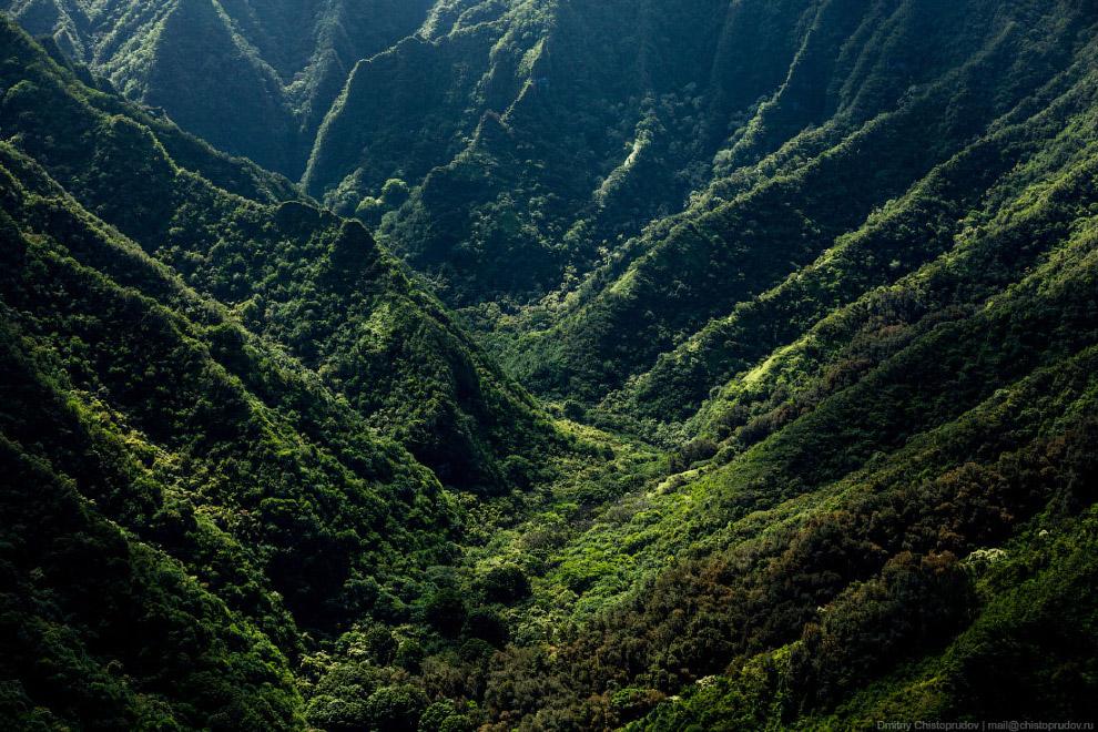 Остров являлся местом съёмок известного телесериала «Lost» и фильма «Парк Юрского периода».