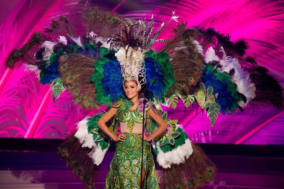 Мисс Парагвай 2014