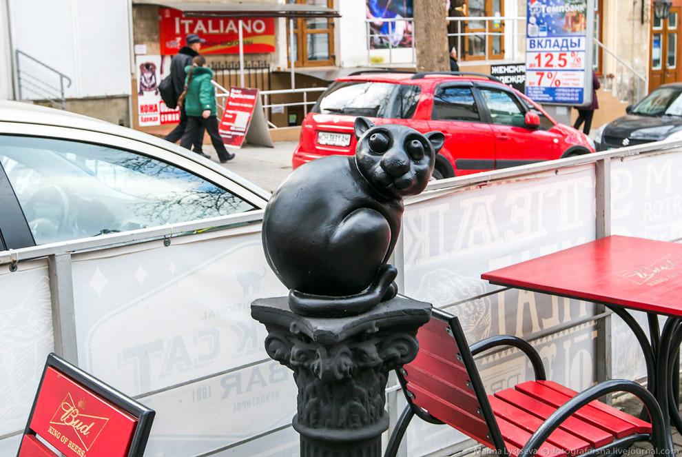 Кафе с котом на Айвазовского.