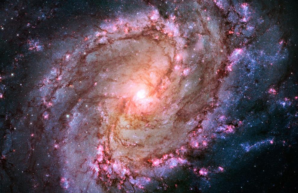 Спиральная галактика Южная Вертушка