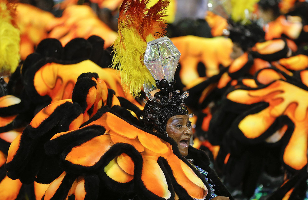 На карнавале в Рио каждая школа самбы представляет свою «сценку», заранее подготовленный сюжет, посвященный Бразилии и не только